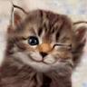 Аватар для Женя Бахтин